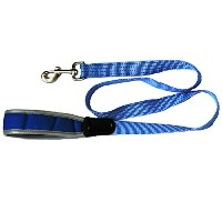 Iconic Pet 91849 Reflective Nylon Leash & Safety Lead For Pets, Blue - Large