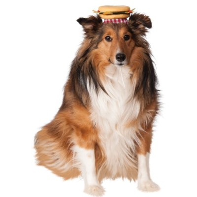 Rubies Costume Company Cheeseburger Hat for Pets, Medium/Large by Rubie's Costume Co