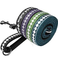 """Blueberry Pet Leashes For Dog 1"""" by 4-Feet Long Jacquard Dog Leash in Black with Neoprene Padded..."""