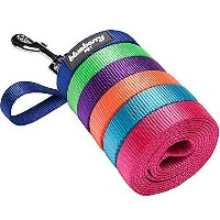 Blueberry Pet 1-inch by 4-Feet Classic Solid Basic Nylon Dog Leash Large Made For Last - French...