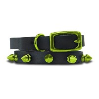 Platinum Pets Genuine LC10INCLMSPK Leather Cat/Puppy Collar with Spikes, Corona Lime [並行輸入品]