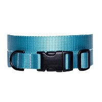 Max & Zoey 1-Inch Wide Basic Dog Collar, Large, Sky Blue [並行輸入品]