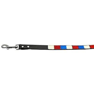 Mirage Pet Products Patriotic Ice Cream Paws Collars with 3/4-Inch Match Leash for Dogs [並行輸入品]