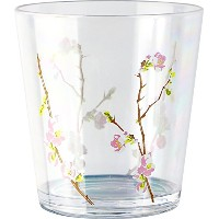 Corelle Coordinates Cherry Blossom 19-Ounce Acrylic Glass, Set of 6 by CORELLE