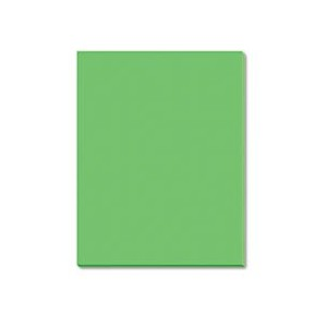 Riverside Construction Paper, 76 lbs., 18 x 24, Green, 50 Sheets/Pack (並行輸入品)