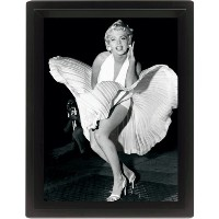 Marilyn Monroe air well (20,3cm x 25,4cm)