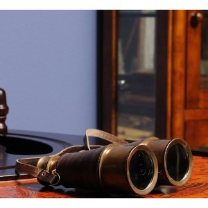Brass Binoculars with Leather Overlay by Old Modern Handicrafts