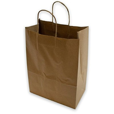 2dayShip Paper Retail Gift Bags with Rope Handles 10 x 5 x 13 inches, 25 Count by 2dayShip