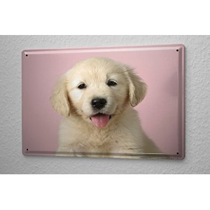 Tin Sign ブリキ看板 Military Puppy Golden Retriever gift paper Metal Plate