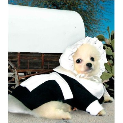 Pilgrim Girl Costume for Dogs - Size 5 (14 l x 18.5 - 20.5 g) by Puppe Love