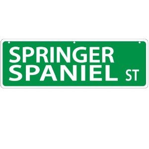 Imagine This Springer Spaniel Street Sign by Imagine This