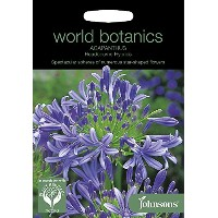 WB 英国ジョンソンズシード Johnsons Seeds World Botanics Collection Agapanthus africanus Headbourne Hybrids...