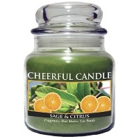 A Cheerful Giver Sage and Citrus Jar Candle, 16-Ounce [並行輸入品]