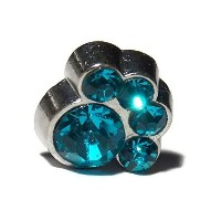 December Light Blue Color Gem Paw Print Floating Charm for Floating Lockets - Old School Geekery TM...