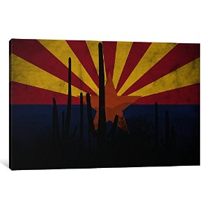 iCanvasART 1ピースArizona Cactusグランジ国旗キャンバスプリントby Kane、0.75by 26by 40-inch