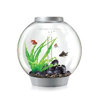 biOrb CLASSIC 30 Aquarium with LED Light - 8 Gallon, Silver by biOrb