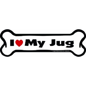 Imagine This Bone Car Magnet, I Love My Jug, 2-Inch by 7-Inch by Imagine This