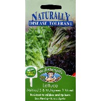【輸入種子】Mr.Fothergill's SeedsNaturally Disease Tolerant CollectionLettuce Multired 5 & Multigreen 3...