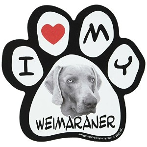 Imagine This 5-1/2-Inch by 5-1/2-Inch Car Magnet Picture Paw, Weimaraner by Imagine This