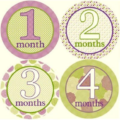Spring Field Monthly Baby Bodysuit Stickers by MyLullabug