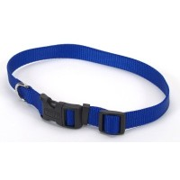 Coastal Pet Products CO04802 1 in. Adjustable Collar - Blue