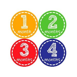 Months in Motion 023 Monthly Baby Stickers Gender Neutral Months 1-12 by Months In Motion