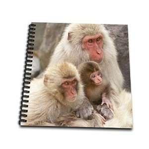 Danita Delimont – Monkeys – 日本、長野、Jigokudani、雪Monkey family-as15 rti0487 – Robティレー – Drawing Book...