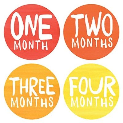 Lucy Darling Baby Monthly Stickers - Gender Neutral - Rainbow Spectrum - Months 1-12 by Lucy Darling