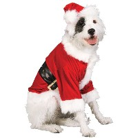 【送料無料】【Rubie's Christmas Pet Costume Santa Claus Large by Rubie's】 b00cn7vcri