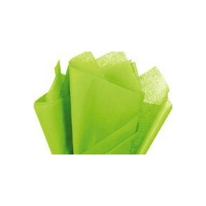 Bulk Bright Lime Green Tissue Paper 20 x 30 - 48 Sheets by Premium Quality Gift Wrap Paper