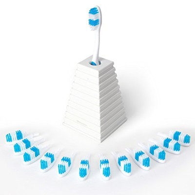 13Clean - Manual Toothbrush with a New Head Each Month. (Blue) by ToiletTree Products