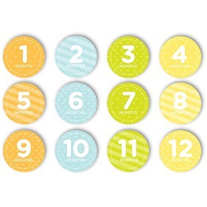 Tiny Ideas First Year Belly Stickers by Tiny Ideas