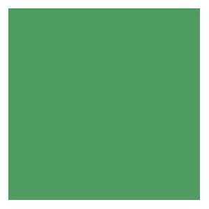 Green Tissue Paper - 20 sheets - 20in.x26in. Sheets by Generic