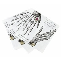Talking Tables Skeleton Crew Paper Party Napkins, 33cm, 20-Pack by Talking Tables [並行輸入品]
