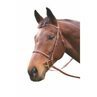 Henri De Rivel Plain Raised Snaffle Bridle – カラー: Havanaサイズ:オーバーサイズ