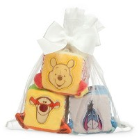 Disney Winnie the Pooh and Pals Soft Blocks for Baby [並行輸入品]