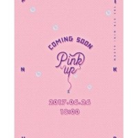 予約販売 APINK 6TH MINI ALBUM - PINK UP (A VER) CD 全国送料無料 201707  201708