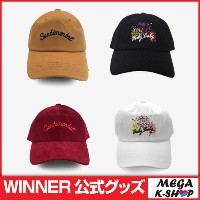 WINNER - WINNER BALL CAP[EXIT][ウィナー][YG][公式グッズ]