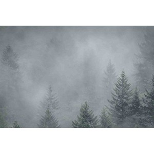 """Marmont Hill Foggy Pines絵画印刷Wrappedキャンバス 24"""" x 16 MH-MWW-SCWTZ-96-C-24"""