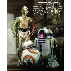 【[ディズニー]Disney Star Wars Droids R2D2, C3PO, and BB8 Super Soft Plush Oversized Twin Sherpa Throw...