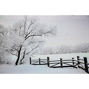 """Oak Street Peaceful Snowy Winter Pasture with Trees壁アートキャンバスPicture withきらきら光るLEDライト( 24"""" x 16"""" x..."""