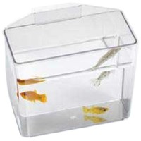 Lee's Pet Products ALE10516 Heavy Duty Specimen Container for Aquarium, Small by Lee's Pet Products
