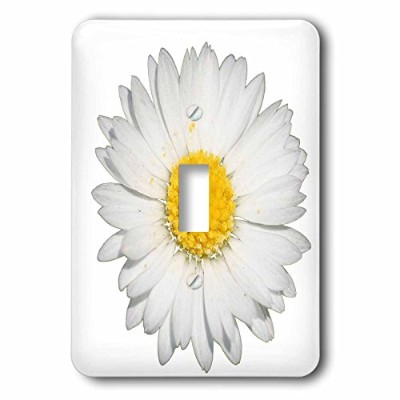 3drose LSP _ 243184_ 1Close Up Of A Beautiful Yellow Daisy Flower Isolated Singleトグルスイッチ、ホワイト