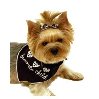 High Quality's Pet Scarf Bandanna, Favorite Child, Small...
