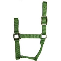 High Quality 1-Inch Nylon Quality Halter for 500 to 800-...