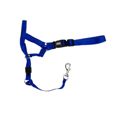 Coastal Walk 'n Train Head Halter, Blue, Size 5 XX Large by Coastal