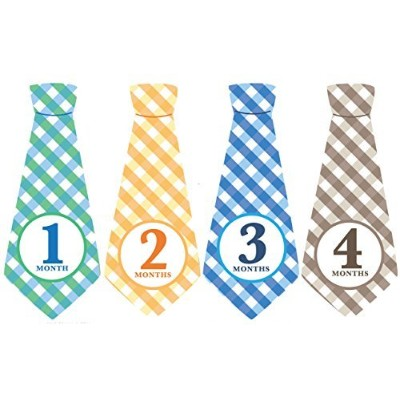 Monthly Baby Ties, Plaid, Baby Boy Month Stickers, Baby Necktie by Penny & Prince Designs LLC