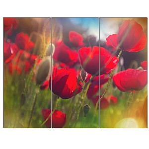Thick Red Poppy Flowers Floral onキャンバスアート壁Photgraphyアートワーク印刷