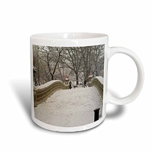 3drose Mug _ 10313 _ 3 Snow Blizzard in Central Park Manhattan New York Cityマジック変換マグ、11オンス、ブラック/ホワイト