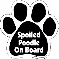 High quality Paw Car Magnet, Spoiled Poodle on Board, 5-1/2-Inch by 5-1/2-Inch